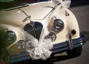 wedding-758001_1280